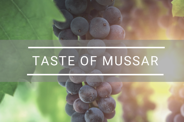 TASTE OF MUSSAR (2)