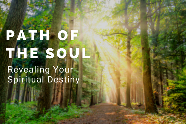 PATH OF THE SOUL (8)