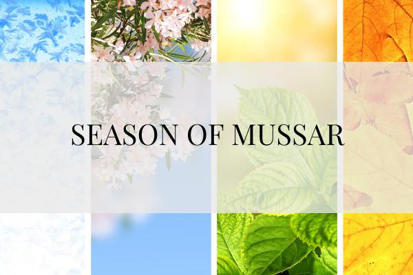 Season of Mussar Icon